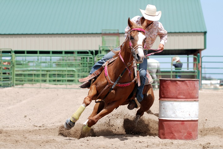 Rider and horse pushing through the final stretch of a barrel racing competition.
