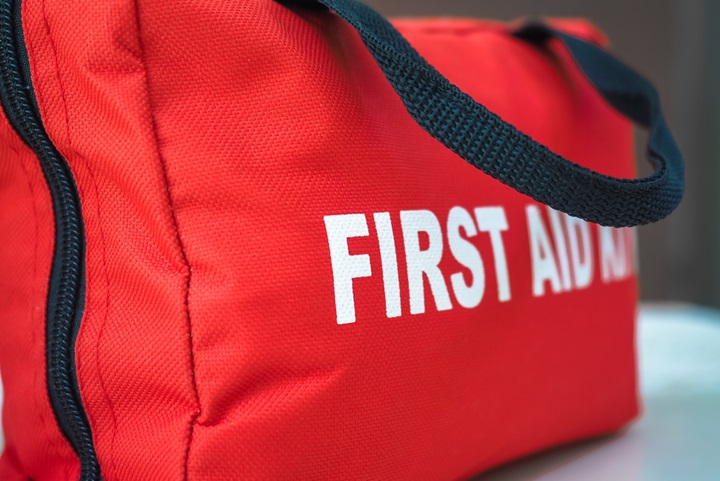 Learn what to include in your horse's first aid kit.