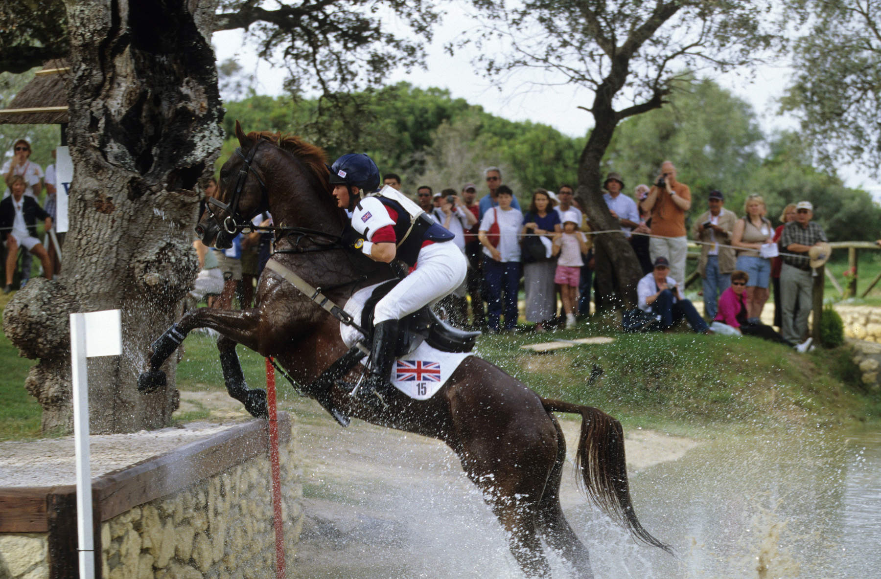 Action shot of rider and horse jumping in competition