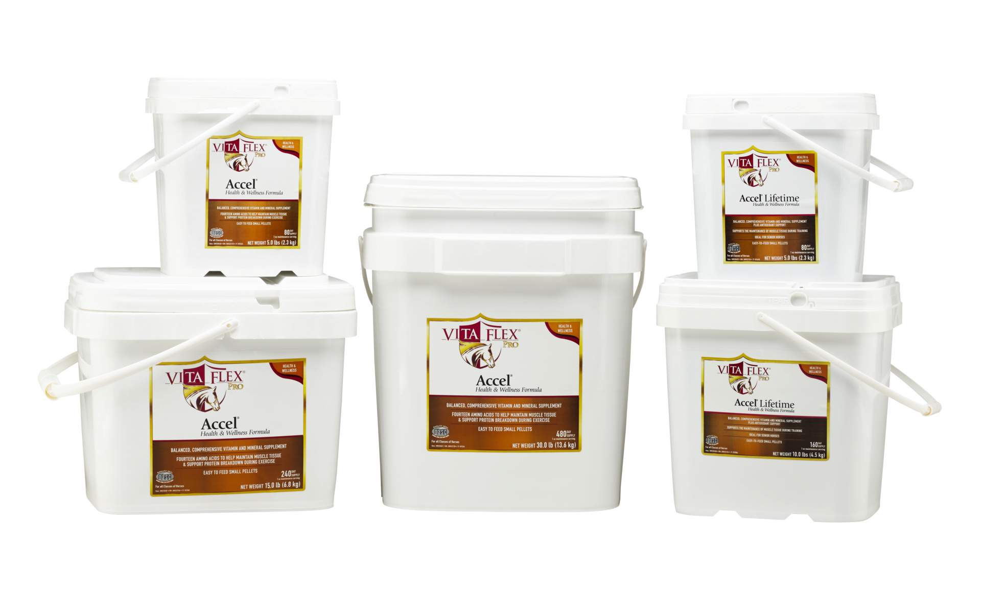 Product shot of Vita Flex® Accel & Accel Lifetime Horse Supplements