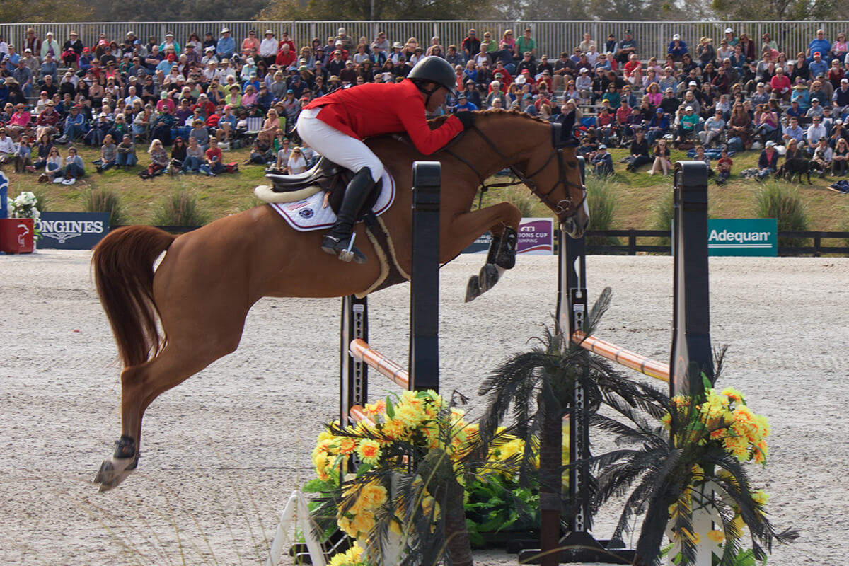 5 Tips for Show Jumping Success