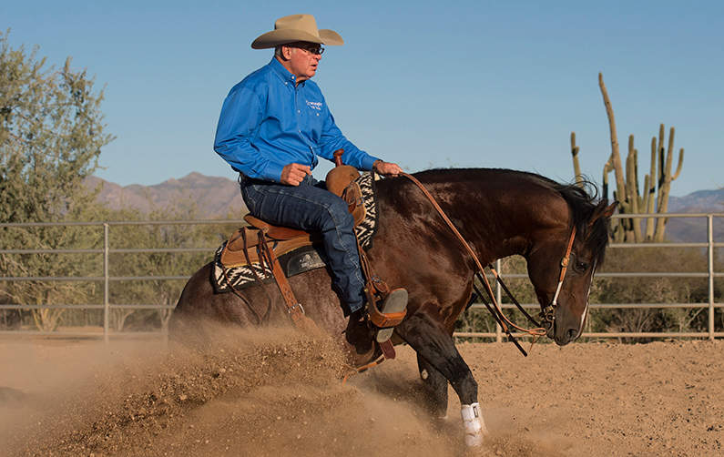 Vita Flex Victory Team Rider Al Dunning and Horse
